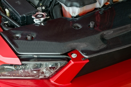 Cervini\'s 2010-12 Carbon Fiber Radiator Cover