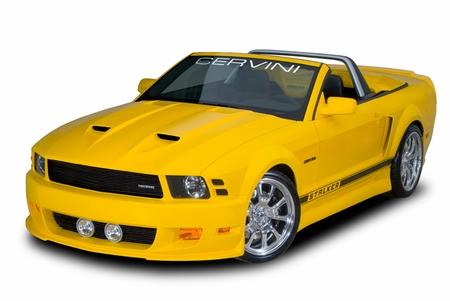 Cervini\'s Stalker Hood and Front Bumper 2005-09 Mustang