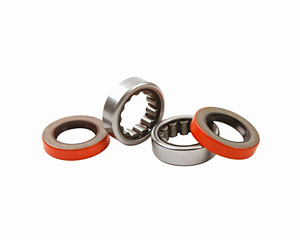 Ford Performance Axle Bearing and seal kit, 2005-14 Mustang