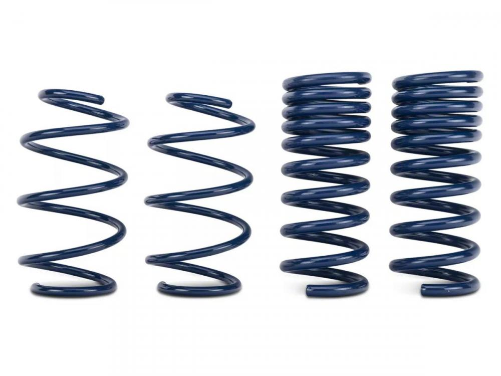 Ford Performance Street Lowering Springs, 2015+ Mustang Coupe