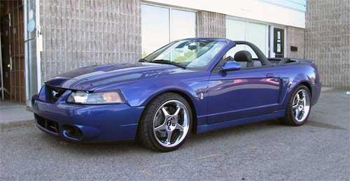 Jeff's 2003 Cobra